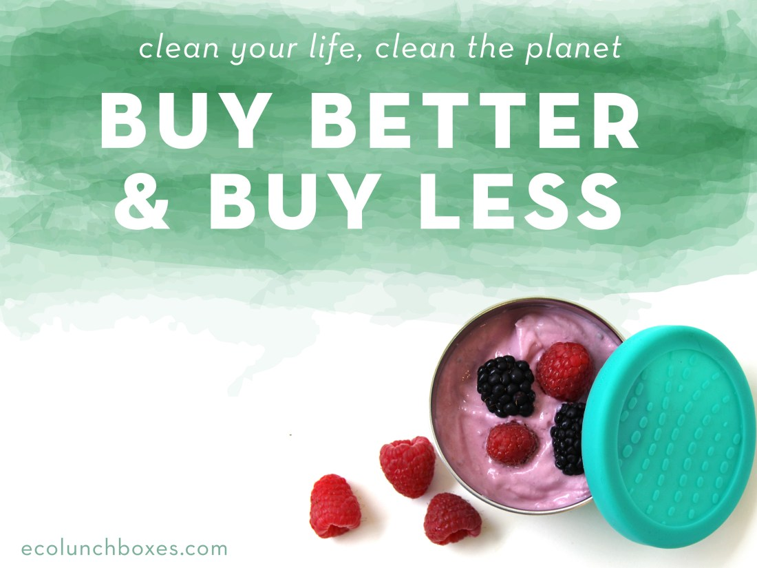 Clean up your life and the planet with ECOlunchbox!