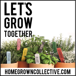 homegrowncollective.com