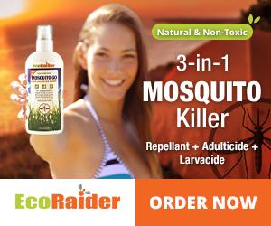 EcoRaider_Mosquito