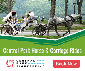 Central Park Horse & Carriage Rides, central park, travel