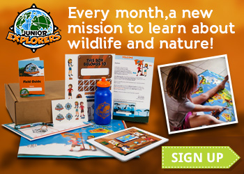 Every month, a new mission to learn about wildlife and nature with Junior Explorers!