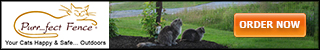 Purrfect Fence Keeps Cats Happy & Safe Outdoors