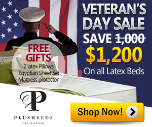Veteran's Day Mattress Sale