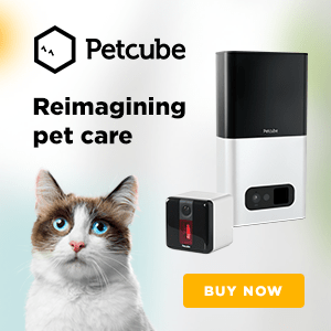Petcube: Interactive Wi-Fi Pet Camera