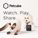 Petcube Watch. Play. Share.