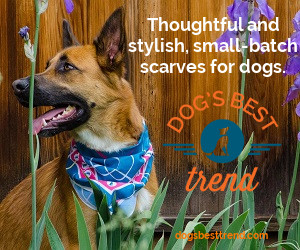 Thoughtful and stylish small-batch scarves for dogs.