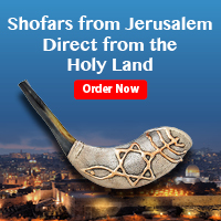 Shofars from Jerusalem Direct from the Holy Land