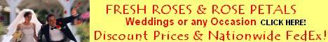 Bulk Flowers Wholesale