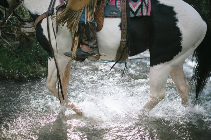 Image result for up the mountain by horseback, panama
