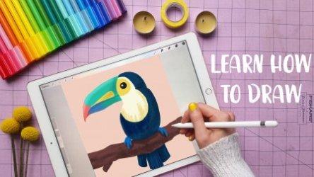 Online Drawing Classes Start for Free Today Skillshare
