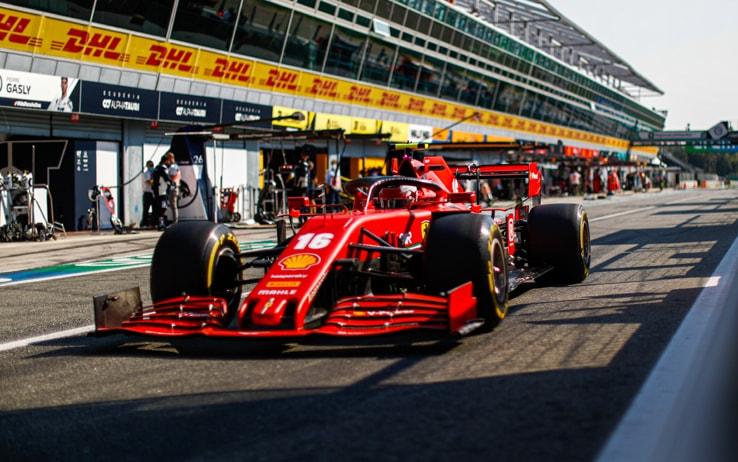 F1 Covid-19