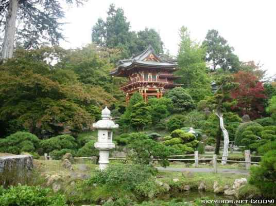 San Francisco : Japanese Tea Garden, Golden Gate Bridge, Alcatraz, Fisherman's Wharf, Pier 39 photo 11