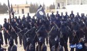 """اعتقال مسلحين تابعين لـ""""داعش"""" في باكستان"""