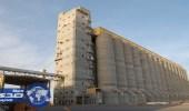 «العامة للحبوب» تنهي ترسية الدفعة الأولى من القمح المستورد هذا العام