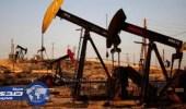 معهد البترول : هبوط مخزونات النفط الأمريكية 8.7 مليون برميل