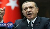 سويسرا ترفض ملاحقة شخض قضائيا بتهمة إهانة «أردوغان»