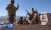 الجيش اليمني والمقاومة يسيطران على الضبوعة آخر معاقل الانقلابيين في نهم