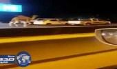 بالفيديو.. مطاردة بين مواطنين وجمل هارب في شوارع تبوك