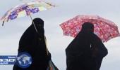 حظر ارتداء النساء للنقاب في الأماكن العامة بالنمسا