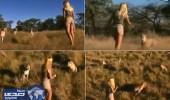 بالفيديو.. مقطع فيديو لفتاه بين 10 نمور يُباع بمليون دولار