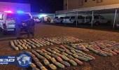 """بالصور..أمن الطرق يحبط تهريب 92 كيلو من مخدر القات بـ"""" رنية """""""