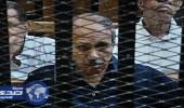الجنايات المصرية تقضي بسجن وزير الداخلية الأسبق لاستيلائه على المال العام