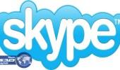 باحثون: «سكايب» الأكثر استخداما بين مجرمي الإنترنت