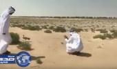 بالفيديو.. محمد بن راشد يأمر بتحويل مسار مشروع لإنقاذ أنثى «حبارى»