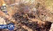 مدني جازان يسيطر على حرائق جبال فيفاء