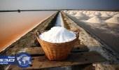 """التاريخ المجهول لـ """" الملح """" أبرزه استخدامه في الحروب"""