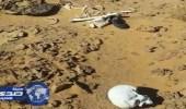 العثور على بقايا جثة بوادي العاقر