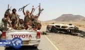 الجيش اليمني يقهر الحوثيين في ميدي