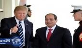 دبلوماسي أمريكي : نتطلع لاستمرار التعاون مع مصر