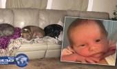 تركا طفلتيهما الرضيعة برفقة 3 كلاب بمفردها فقتلوها