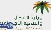 العمل تعلن عن عدد المواطنين وشركات الاستقدام المسجلة في «مساند»