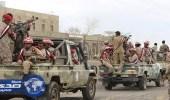 قوات الشرعية اليمنية تواصل تقدمها باتجاه مديرية موزع غربي تعز