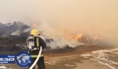 بالصور.. السيطرة علي حريق في مجموعة أعلاف بالكعكية