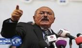 السلطات المصرية تبعد نجل شقيق المخلوع صالح عن أراضيها