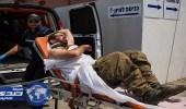 ثعلب يصيب 17 جنديا إسرائيليا في فلسطين