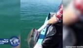 بالفيديو .. صراع بين صياد وسمكة قرش لإنقاذ شباكه