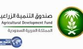 صندوق التنمية الزراعية يمول استثمارات بتكلفة 161مليون ريال