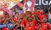 بنفيكا يفوز بلقب كأس البرتغال لكرة القدم بفوزه على جيمارايش
