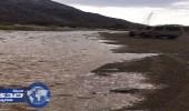 بالصور.. هطول أمطار غزيرة على وادي كبر بمحافظة العيص