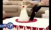 بالفيديو: خليجية تحتفل بطلاقها من زوجها