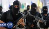 الداخلية المصرية تعلن مقتل 7 إرهابين متهمين باستهداف المسيحيين
