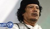 «أرجومنتي نيديلي» تكشف دور قطر في التورط بقتل القذافي