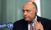 وزير الخارجية المصري يكشف كواليس مكالمة ترامب مع السيسي