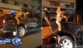 اعتقال رجل أعمال تجول بأسد في شوارع باكستان