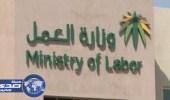 « العمل » : البائعات السعوديات بلغ عددهن 111 ألفاً بنسبة 98.4%