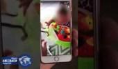 بالفيديو.. أم تٌلقن ابنتها درساً بترك ثعباناً يلدغها